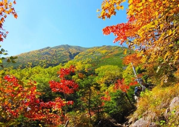 高齢者でも車いすでも♪ 秋にオススメの登山・ハイキングコース