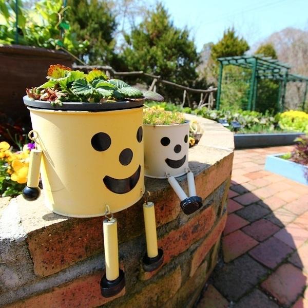 植物の力で認知症ケア♪園芸療法とは